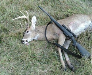 deer and rifle from a deer hunt
